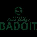 logo badoit vert