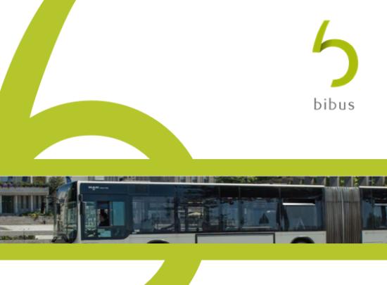 reseau bus bibus